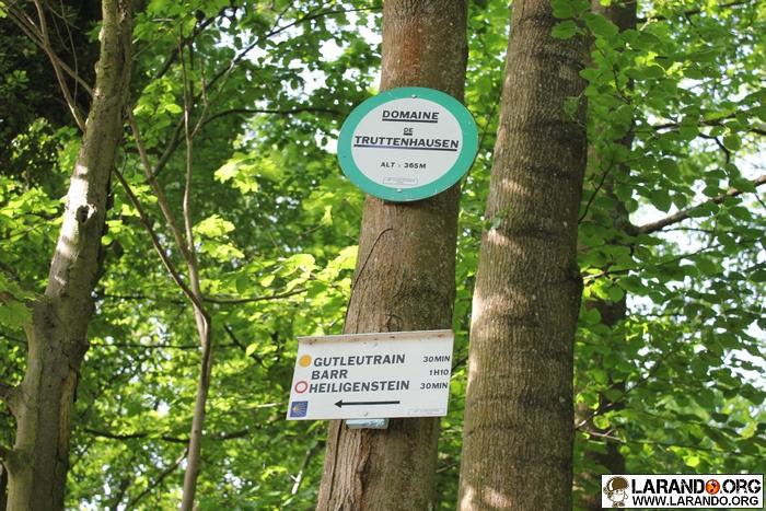 Trek Mont Sainte Odile, Alsace Vosges – photos