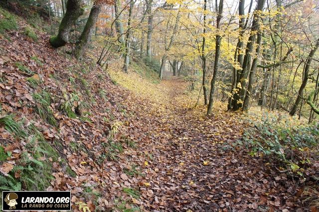 Trek à Saint-Nabor, Alsace Vosges – photos