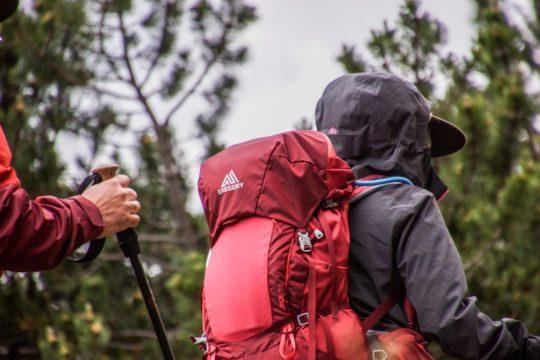 trekking-vosges